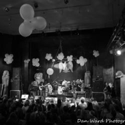 david-nelson-band-dan-ward-photography-13-large