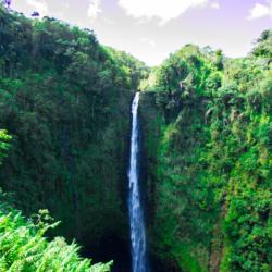 akaka-falls-1
