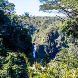 akaka-falls-3