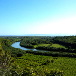 wailua-river-2