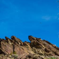 Murray Canyon-Rock Formation-4