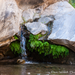 Seven Sisters Falls-Murray Canyon-1