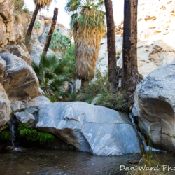 Seven Sisters Falls-Murray Canyon-2