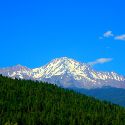 mount-shasta-june-2014-2