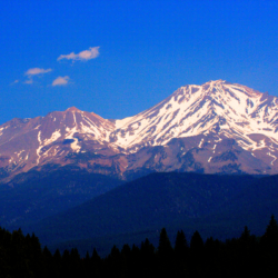 mount-shasta-june-2014