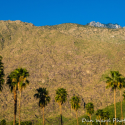Palm Springs Mountains