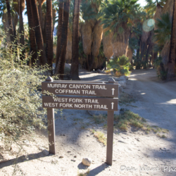 Murray Canyon Trailhead Sign