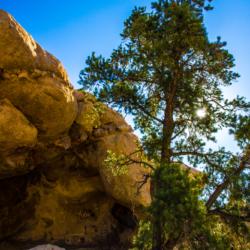 Petroglyphs-Joshua Tree Park-3