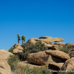 Rock Formation-Joshua Tree Park-1