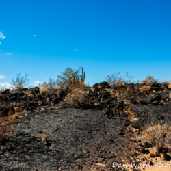 Lava Beds-Schuk Taok Museum-Pinacate Bioshpere Reserve-November 2019-4 (1 of 1)