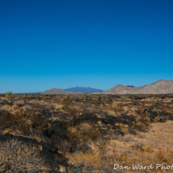 Lava Beds-Schuk Taok Museum-Pinacate Bioshpere Reserve-November 2019-5 (1 of 1)